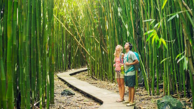 Eco Tourism is the driving force spearheading tours and activities in Hawaii's future.