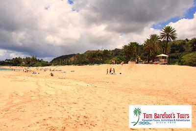 A Hawaiian Beach Icon:  Ehukai Beach on Oahu's North Shore