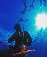 Freedive Hawaii