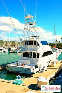 The Big Island of Hawaii Provides the Best Deep Sea Fishing in Hawaii