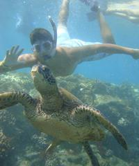 Outrigger Turtle Tour 30 Minutes