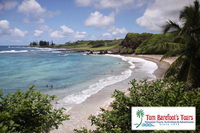 Our next stop was at the black sand beach