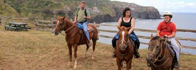 Travel Blog #180 - Horseback Riding with The Mendes Ranch