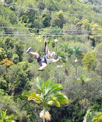 Zipline Through Paradise 8-line Adventure