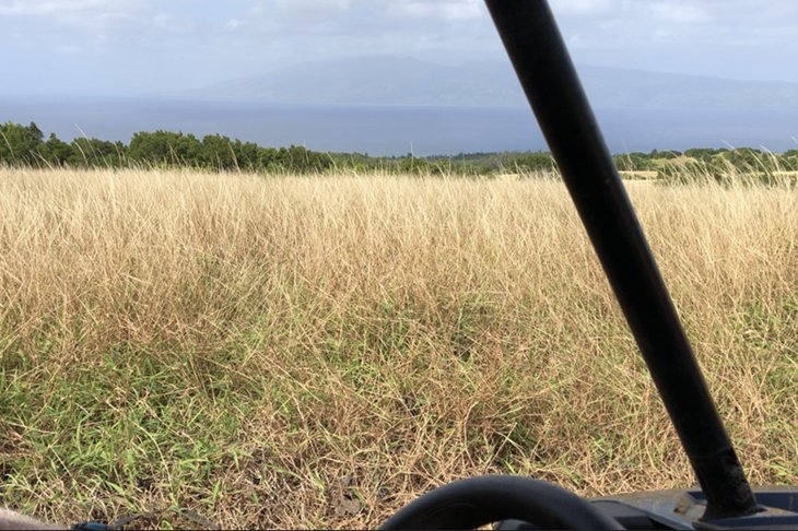 Maui Off Road >> Ride Your Atv On 3600 Acres On The Kaupo Ranch Or 1400