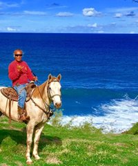 Morning Horseback Trail Rides - Maui Mountain Activities