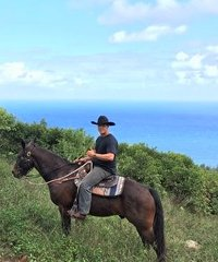 Mule Trail Rides