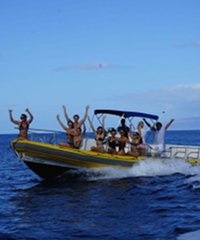 Maui Reef Adventures- Maui Snorkel Tour and Private Charters on Exhilarating 42' Rigid Hull Rafts