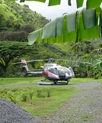 Hana Rainforest Experience with Landing Aprx 75 Minutes