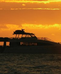 Sunset and Celestial Cruise - Maalaea - Pacific Whale Foundation