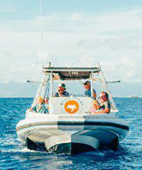 Sea Blade Kaanapali Whale Watch - Paragon Sailing Charters