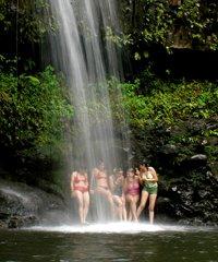 Zipline/Waterfall Hike Combo
