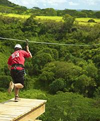 Haleakala Summit Tours and Downhill Bike Tours, 7 Zip-lines, Zip-line Haleakala, Tree-Top Zip-line Tour