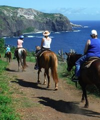 Molokai Helicopter Tour with Maui Horseback Ride