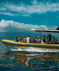 Extended Adventure 6-Hour Lanai Snorkel-Dolphin Watch - Ultimate Rafting