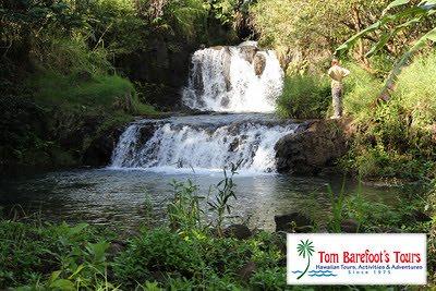 ATV to waterfalls