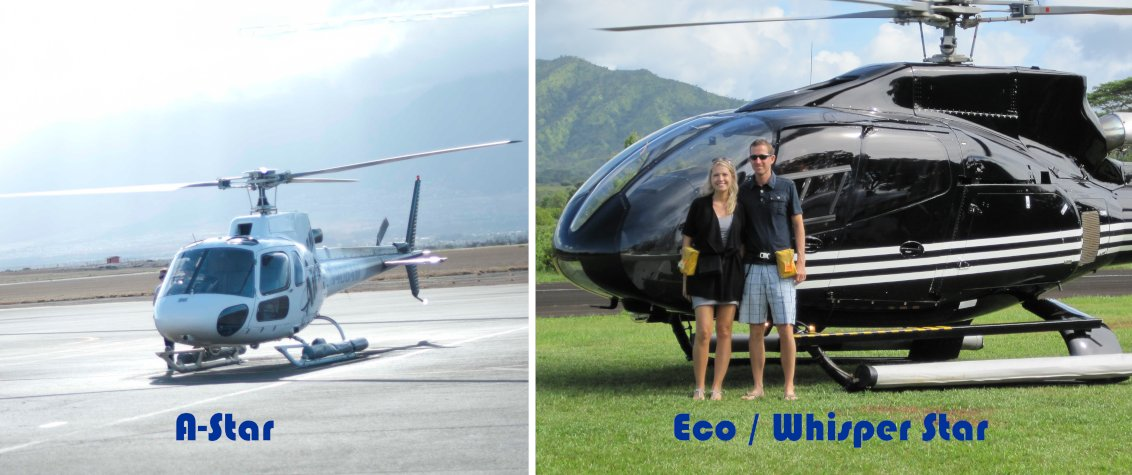 The A-Star and the Eco-Star/Whisper-Star helicopters are both designed for sightseeing.
