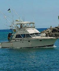 Aikane sportfishing custom fishing charters and private for Bottom fishing oahu