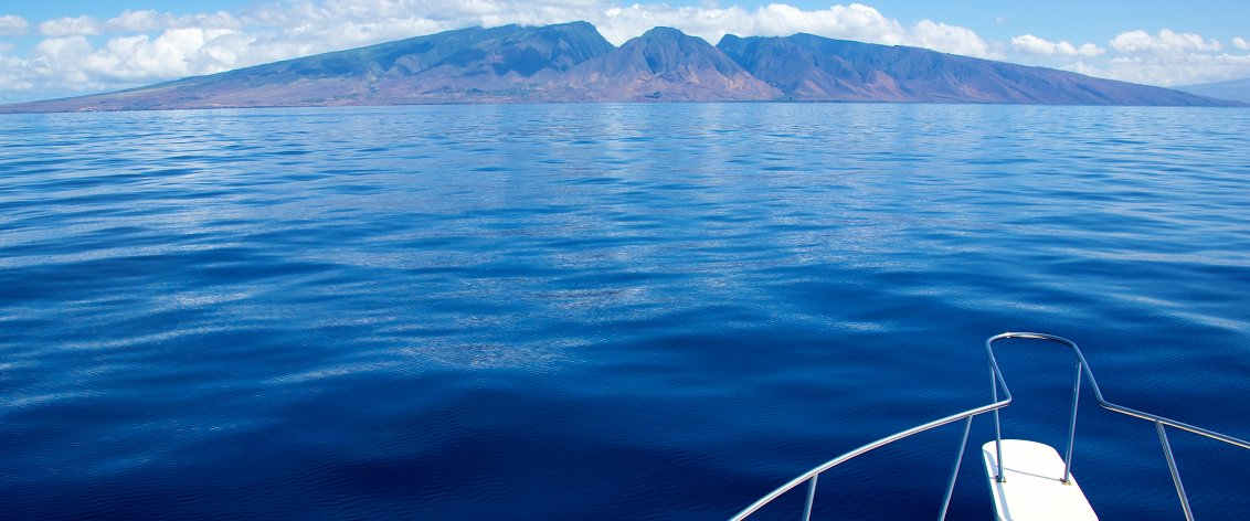 Maui offers many wonderful dinner cruises.