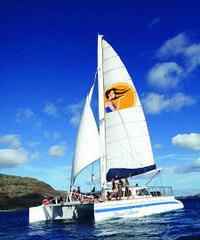 Dolphin and Snorkel Sail West Oahu