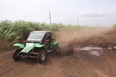 Green Zebra Maui OffRoad Mud