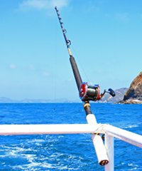 Complete listing of all sport, deep sea, and bottom fishing charters in Hawaii.