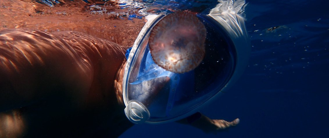 Full-Face snorkel masks are in the news in Hawaii