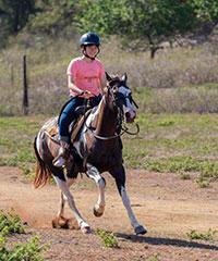 Advanced Trail Rides - Gunstock Ranch