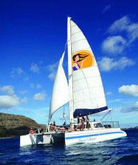 Leid Back' Dinner Cruise, Snorkeling and Dolphins, Whale Watch off the leeward coastline,Oahu Scuba