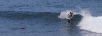 Hookipa Surf Guide