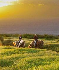 West Maui Journey 1.5-Hour Ride - Ironwood Ranch