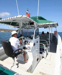 Snorkeling Tours, Day Charters, Whale Watching