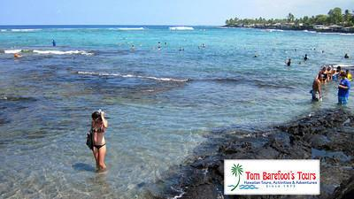 Great Snorkeling at Kahalu'u Beach Park