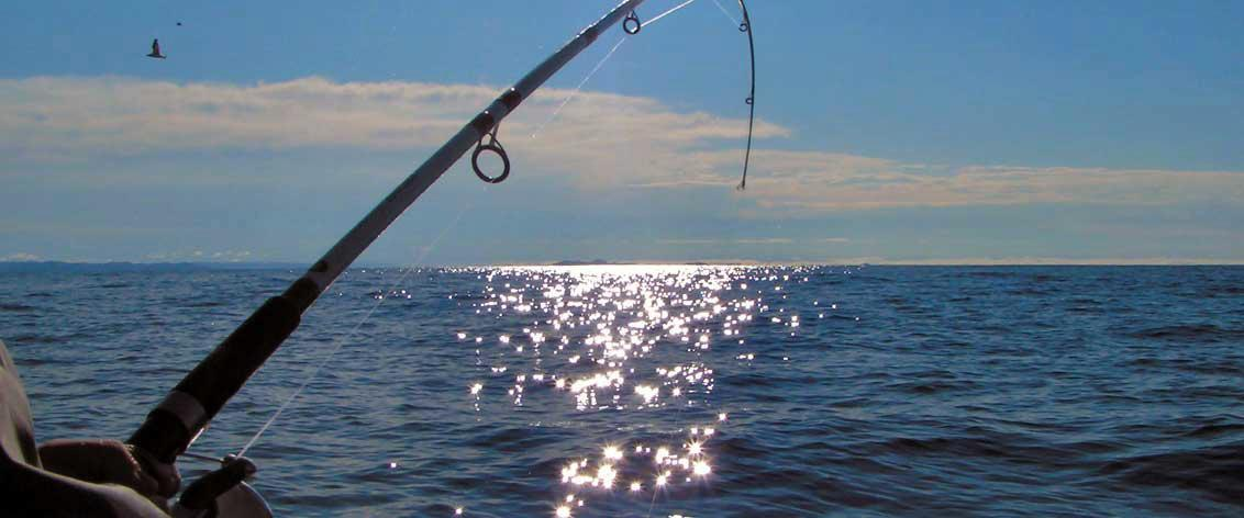 Kauai fishing charters provide some great sport fishing.