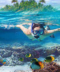 State Wide Snorkeling Excursions