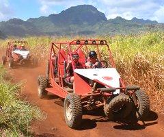 4-Wheel Vehicle Tours, Horseback and ATV Combo
