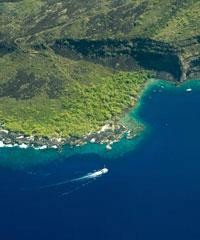 Dolphin Excursions, Whale Watch Tour - Wahine Charters, Snorkeling and Manta Ray trips from Honokoha