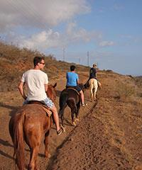 Sunset Ride - Lahaina Stables