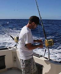 Sea Hawk or Ruckus - Inter Island Sportfishing