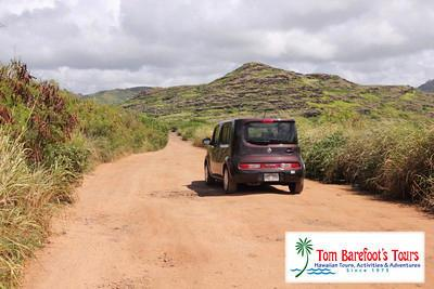 There is a Long and Bumpy Road Trip to Mahaulepu Beach