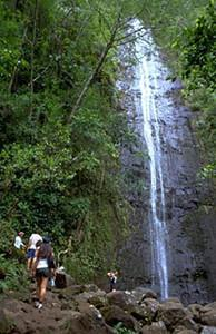 Hawaiian Waterfall Hike