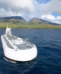 Maui Submarine and Whale Watch Combo