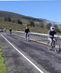 Haleakala Upcountry Bike and Van Tour