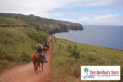 Mendes Ranch Horseback Tour, West Maui Coastline