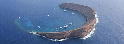 Blog Articles and FAQ's about Molokini
