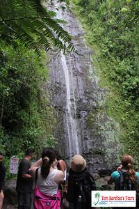 Manoa Waterfall