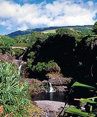 On Maui M2 Hana Adventure Gold- Polynesian Adventure Tours