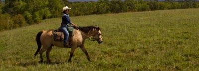 Travel Blog #090 - Horseback Riding with Princeville Ranch (By Jake)