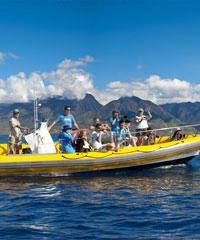 Whale Watch Lahaina Raft