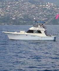Fishing Charter - Private